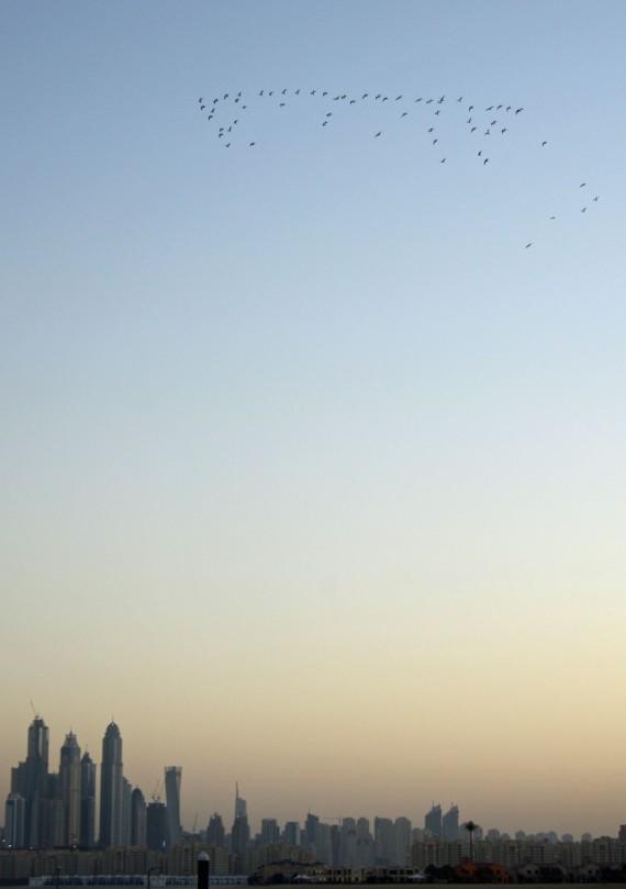 Dubai15