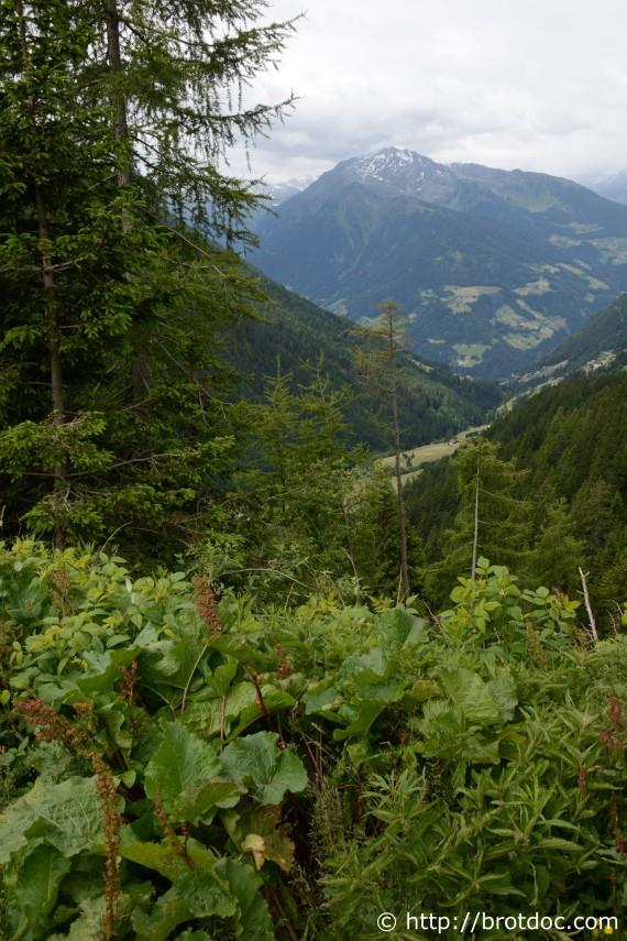 Landschaft12